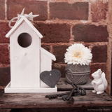 Birdhouse and Squirrel Photographic Print by Leon Le Baron