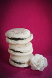 Three Macaroons and a Small White Flower Photographic Print by Laetitia Julien
