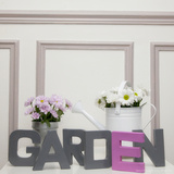 Garden with Pink and White Daisies Photographic Print by  Cazeba