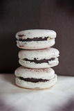 Handmade Macaroons with Chocolate Ganache on Mocha Background Photographic Print by Laetitia Julien