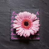 Pink Gerbera on Love Photographic Print by Leon Le Baron