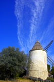 A Mill and an Olive Tree Fotodruck von Laetitia Julien