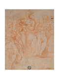 Study for Madonna of the Long Neck Gicleetryck av Parmigianino,