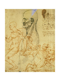 Studies of Proportions and for the Battle of Anghiari Giclee Print by  Leonardo da Vinci