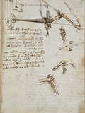 Codex on the Flight of Birds Giclee Print by  Leonardo da Vinci