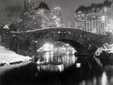 Estanque de Nueva York en invierno Pósters