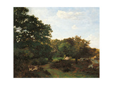 Forest of Fontainebleau Giclee Print by Frederic Bazille