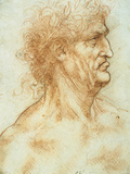 Head of a Man in Profile Giclee Print by  Leonardo da Vinci