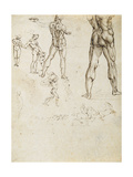Figure Studies and Nudes for the Battle of Anghiari Giclee Print by  Leonardo da Vinci
