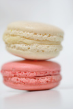 Raspberry Macaroons and Vanilla Photographic Print by Laetitia Julien