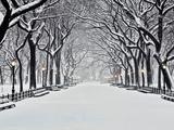 Central Park på vintern Konst av Rudy Sulgan
