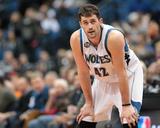 Jan 8, 2014, Phoenix Suns vs Minnesota Timberwolves - Kevin Love Photo