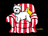Westie in Chair Posters by Marc Tetro