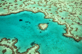 Great Barrier Reef IV Photographic Print by Larry Malvin