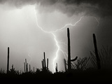 Electric Desert II BW Photographic Print by Douglas Taylor
