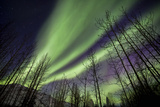 Aurora Borealis XI Photographic Print by Larry Malvin