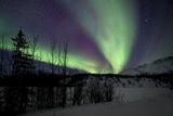 Aurora Borealis VII Photographic Print by Larry Malvin