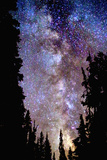 Night at Crater Lake Photographic Print by Douglas Taylor