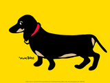 Long Dachshund Prints by Marc Tetro