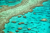 Great Barrier Reef I Photographic Print by Larry Malvin