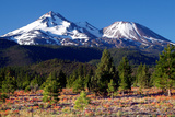 Morning in Shasta Photographic Print by Douglas Taylor