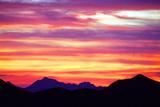Lingering Color Fotodruck von Douglas Taylor
