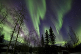 Aurora Borealis X Photographic Print by Larry Malvin