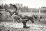 Bucked Off Photographic Print by Roberta Murray