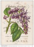Country Gardens I Prints by Zachary Alexander