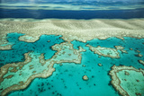 Coral River I Photographic Print by Larry Malvin