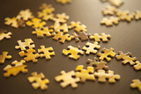 Puzzle I Photographic Print by Karyn Millet