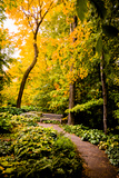 Autumn Pathway II Photographic Print by Beth Wold
