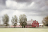 The Horse Barn Photographic Print by Roberta Murray
