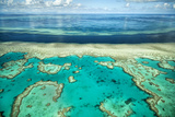 Coral River II Photographic Print by Larry Malvin