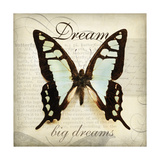 Dream Big Giclee Print by Amy Melious