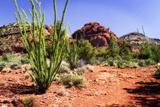 High Desert II Photographic Print by Alan Hausenflock