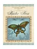 Papilio Paris Posters af Gregory Gorham