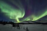 Aurora Borealis I Photographie par Larry Malvin