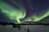 Aurora Borealis I Photographic Print by Larry Malvin