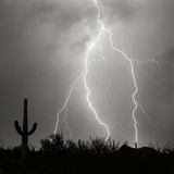 Electric Desert III BW Photographic Print by Douglas Taylor