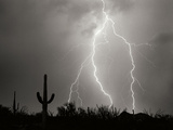 Electric Desert I BW Photographic Print by Douglas Taylor