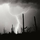 Electric Desert IV BW Photographic Print by Douglas Taylor