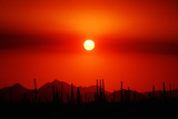 Smokey Sunset Photographic Print by Douglas Taylor