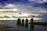 Cedar Island Quay II Photographic Print by Alan Hausenflock
