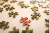 Puzzle IV Photographic Print by Karyn Millet
