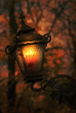 Lantern 2 Photographic Print by Ricardo Demurez