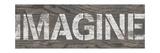 Imagine Premium Giclee Print by N. Harbick