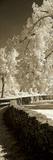 Seminary Wall Panel Fotografie-Druck von Alan Hausenflock