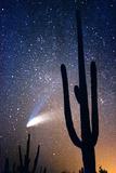 Hale Bop Comet Photographic Print by Douglas Taylor