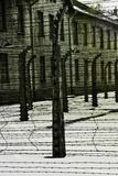 Concentration Camp Photographic Print by Ricardo Demurez